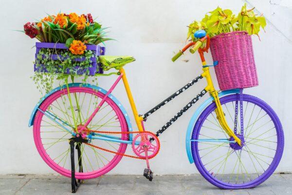 Fake,Plastic,Flower,In,Vase,On,Bicycle